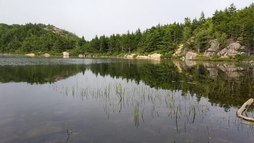 acadia trail 5