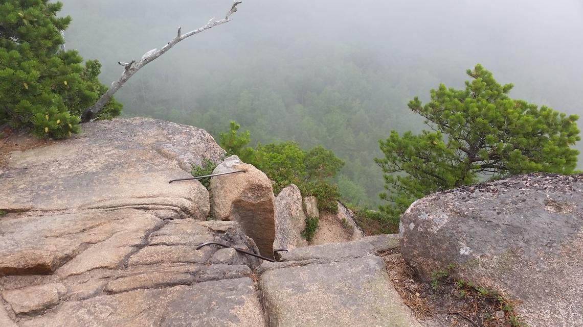 acadia trail 7